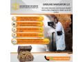 best-gold-detector-2020-ground-navigator-20-small-2