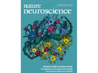 Nature Neuroscience impact factor