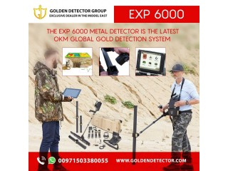 Best metal detector 2020 OKM EXP 6000 Professional