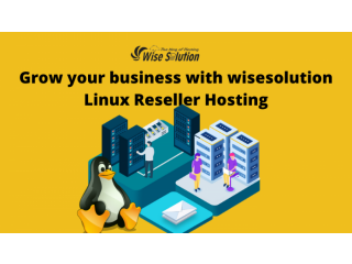 Grow your business with wisesolution Linux Reseller Hosting