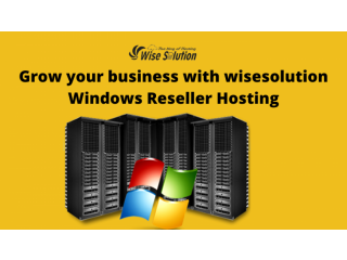 Grow your business with wisesolution Windows Reseller Hosting