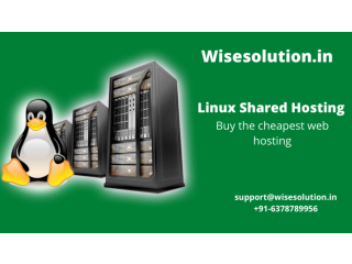 Wisesolution- the cheapest linux shared web hosting in india
