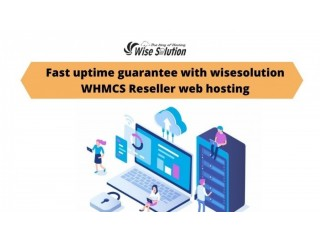 Fast uptime guarantee with wisesolution WHMCS reseller web hosting
