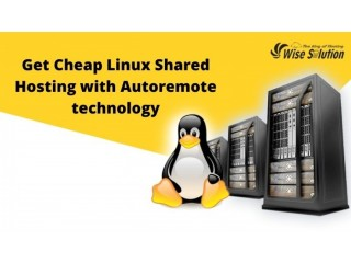 Get Cheap Linux Shared Hosting with Autoremote technology