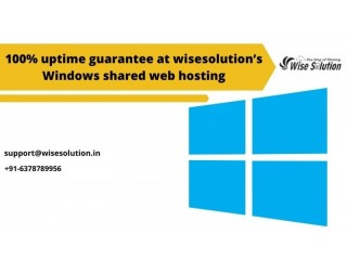 100% uptime guarantee at wisesolution's windows shared web hosting