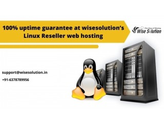 100% uptime guarantee at wisesolution's linux reseller web hosting