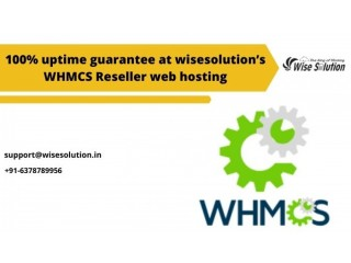 100% uptime guarantee at wisesolution's reseller hosting with WHMCS