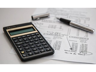 Professional Accounting & Tax Services in Tampa, Florida